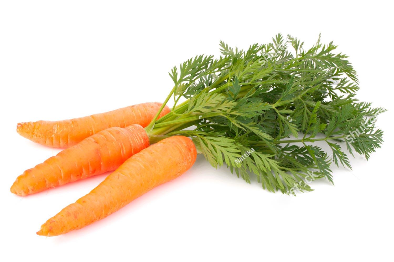 Zanemi, hortalizas y verduras todo el año