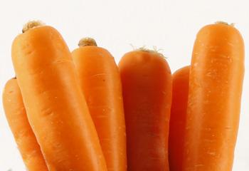 Producción y venta de zanahorias